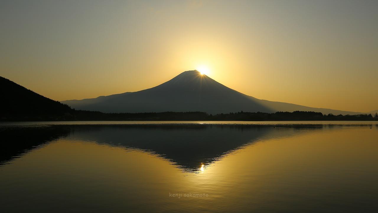 富士山 田貫湖