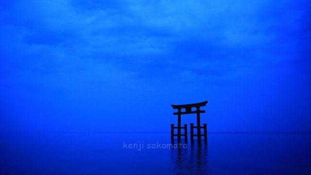滋賀 琵琶湖 白鬚神社