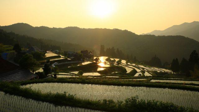 滋賀 髙島 畑