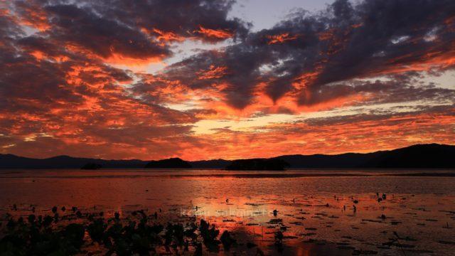 滋賀 琵琶湖