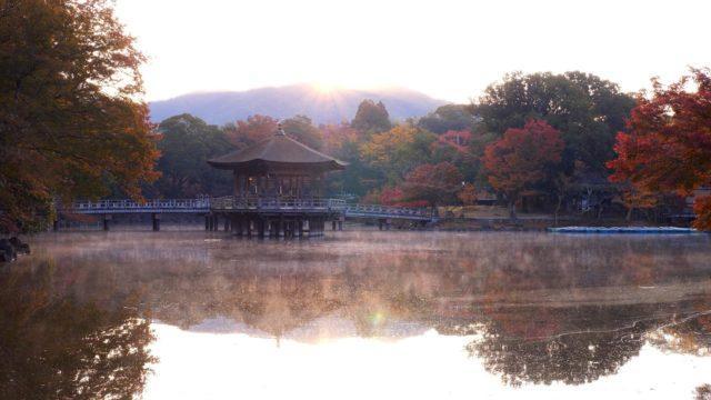 奈良 奈良公園 浮見堂