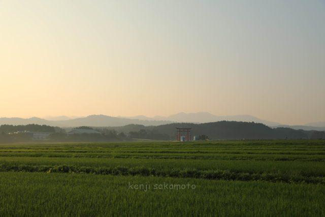 山形 出羽三山神社の大鳥居遠景