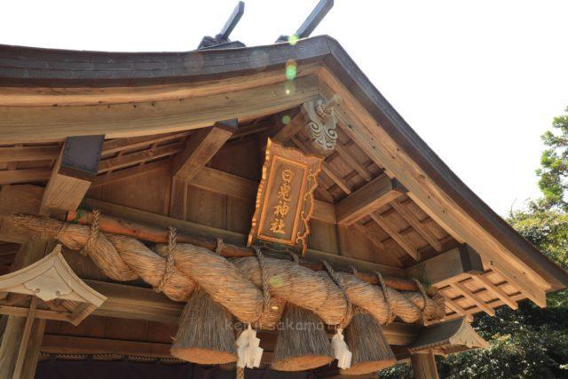 鳥取 白兎神社